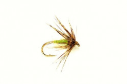 Мушка FM Caddis Spider Green - Фото
