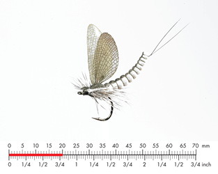 Мушка Json Sweden Mayfly Dun M2 Ash Grey.png