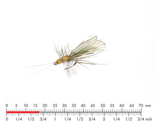 Мушка Json Sweden Caddis Adult 3 Cinnamon Brown Apple Green.png