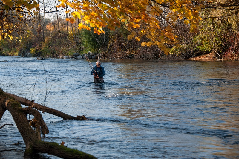 Осенние воды