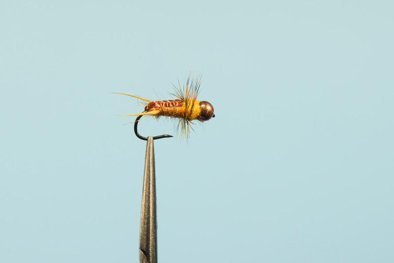 Yellow Sally - желтая опасность для рыбы